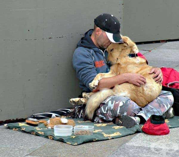 Бездомен мъж кара улично куче да се чувства комфортно и обичано.