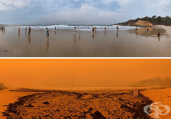 Плаж Татра, Нов Южен Уелс. Черната кал на долната снимка е пепел и въглени, донесени от морето след пожарите.