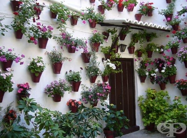 Цветни празненства в Кордоба, Испания.