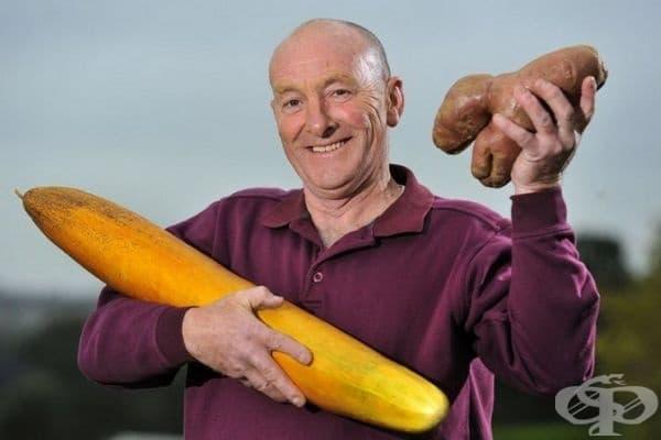 Джо Атертън, който обича да отглежда зеленчуци - краставица с дължина 80 см и картофи с тегло 1,5 кг.