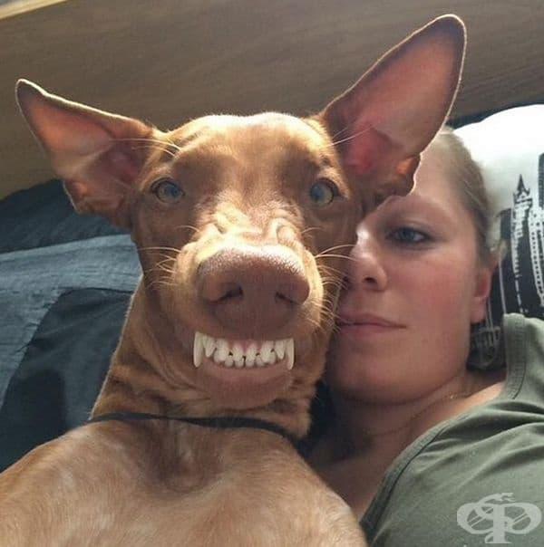 Покажете зъбки!