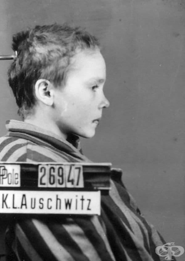 Оригиналните снимки са били използвани като част от проект за документиране на хората, депортирани в Аушвиц.