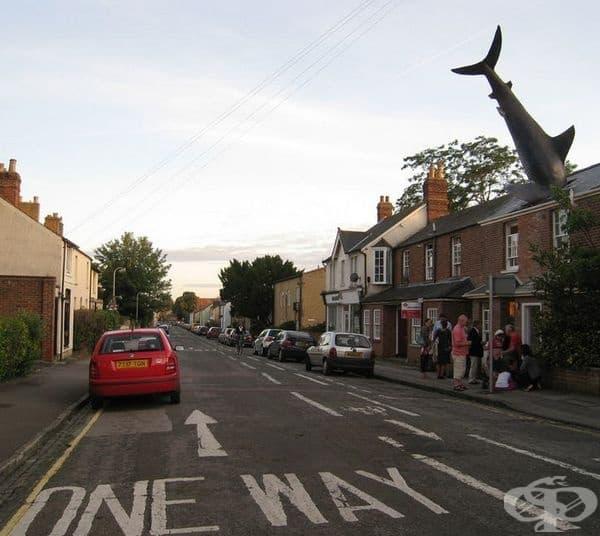 """""""Акулата в Хедингтън"""", Оксфорд, Англия. Според Атлас Обскура скулптурата е дълга 8 метра и привлича хиляди туристи всяка година!"""