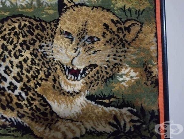 """""""Вече сме горди собственици на този страшен килим за 5 долара."""""""