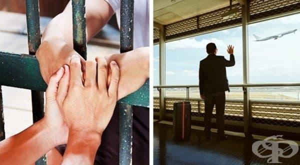 Да бъдете в затвора за 10 години, поели вина за престъпление на свой близък или просто да му помогнете да избегне наказание, но никога повече да не се виждате?