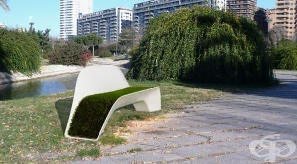 Скамейка с трева.