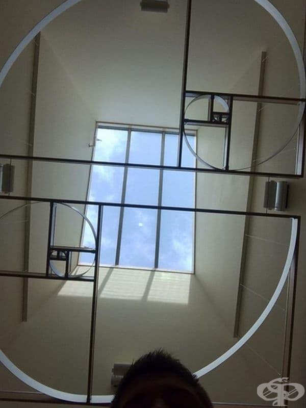 Таванът в кабинет по математика е декориран във формата на спирала на Фибоначи.