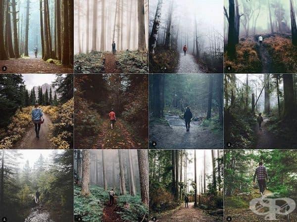 Снимка в гората.