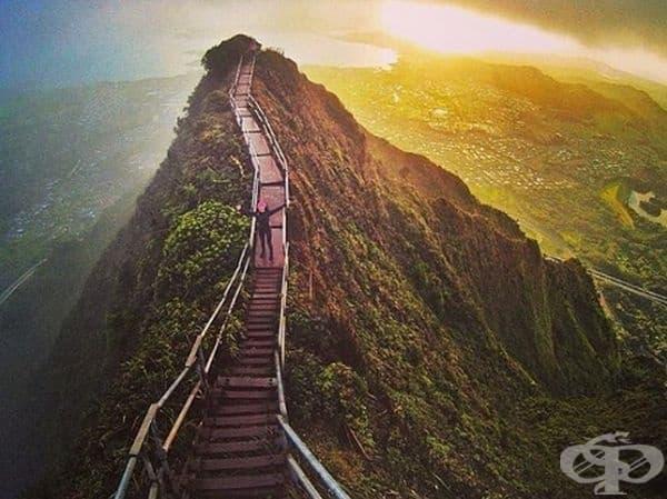 Стълбите Хайку, Хавай