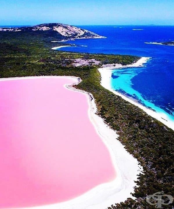 Розовото езеро Хилиър, Австралия