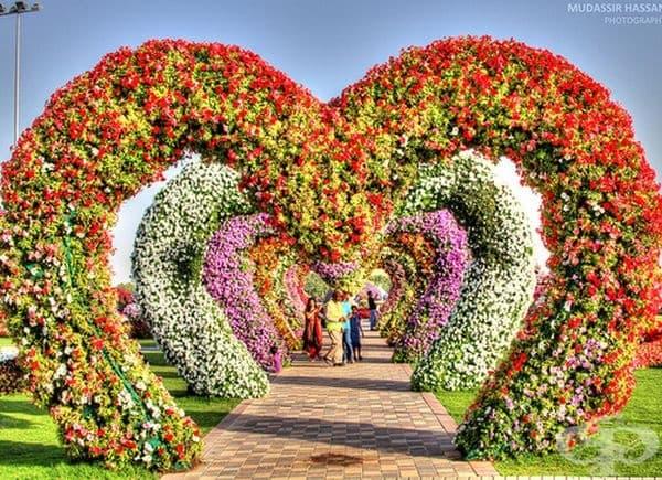 Арки от цветя.