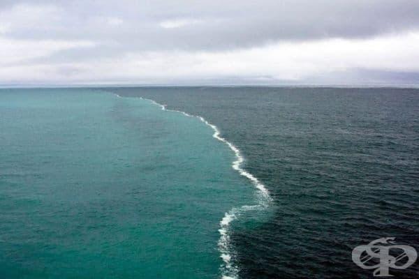 Северно море и Балтийско море.