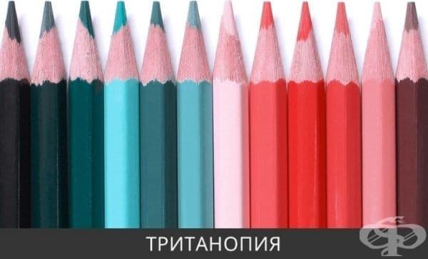 Хората с тританопия виждат всички цветове със зеленикаво - розов оттенък. Това е много рядка форма на цветна слепота, намерена само при 0.0001% от мъжете и жените.