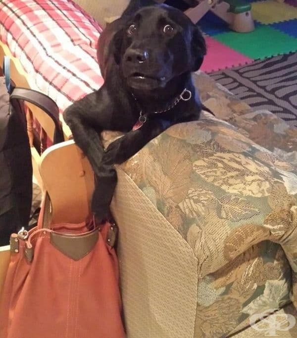 В момента, в който се опитва да издърпа чантата.