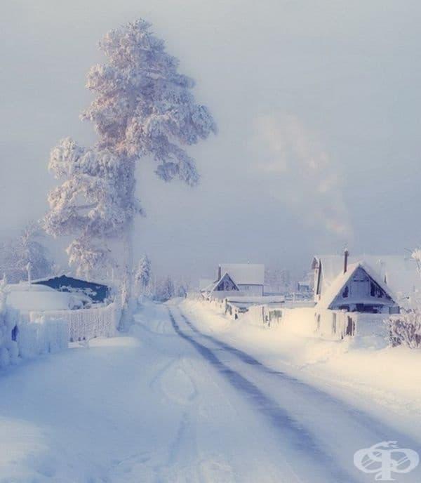Зимно утро.