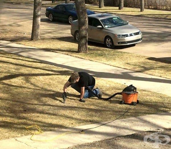 """""""Само моя съсед си почиства тревата по този начин."""""""