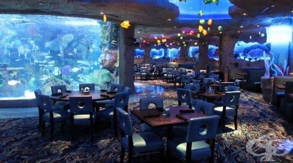 """Ресторант """"Aquarium Restaurants"""", Денвър, Колорадо, Хюстън, Тексас, Тенеси. Подходящ е за семейства с деца. Ресторантът не се намира изцяло под вода, но е заобиколен от 180 хил. литра вода."""