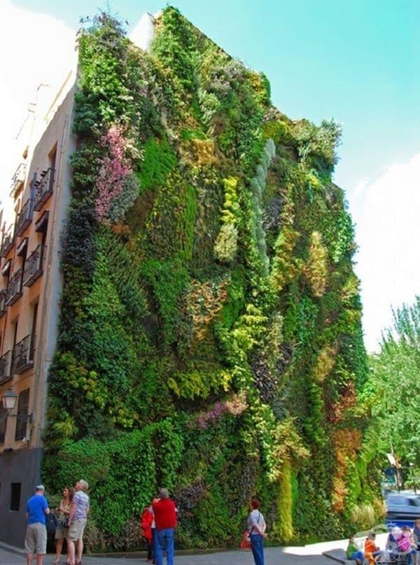 Вертикална градина, Мадрид.