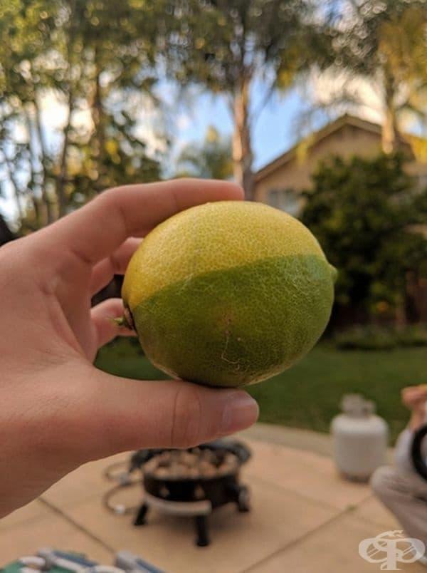 Лимон, узрял наполовина?