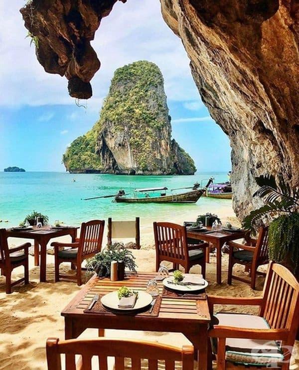 Ресторантът предлага морски дарове определени дни през седмицата,  а през останалото време се сервират закуски и десерти.