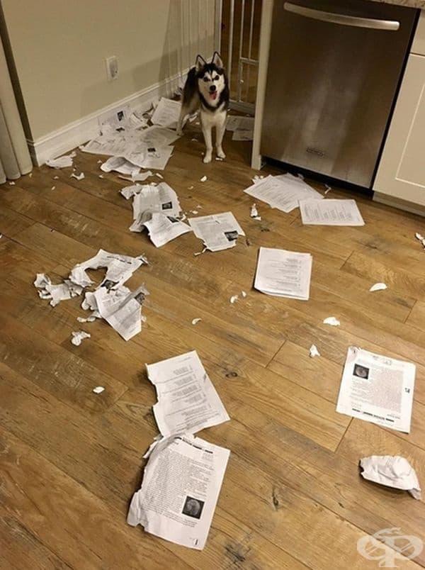 Някой си е поиграл с домашните задачи на учениците.