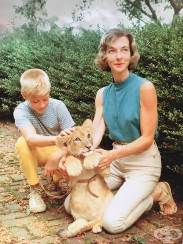 """""""Баба ми (ветеринар) и баща ми са гледали лъв в продължение на няколко години."""", 1959."""