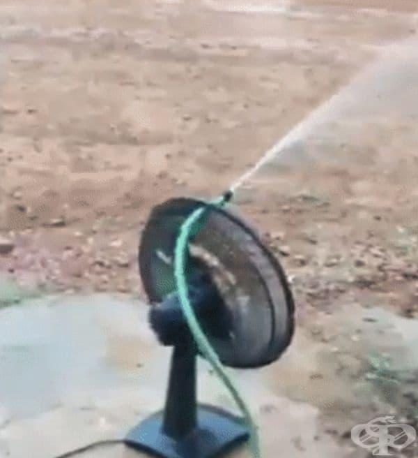 Ето как да си направите пръскачка за градината.