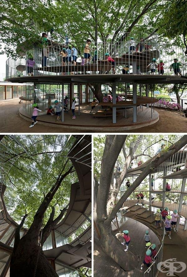 Площадката в детска градина в Япония е разположена около дърво.