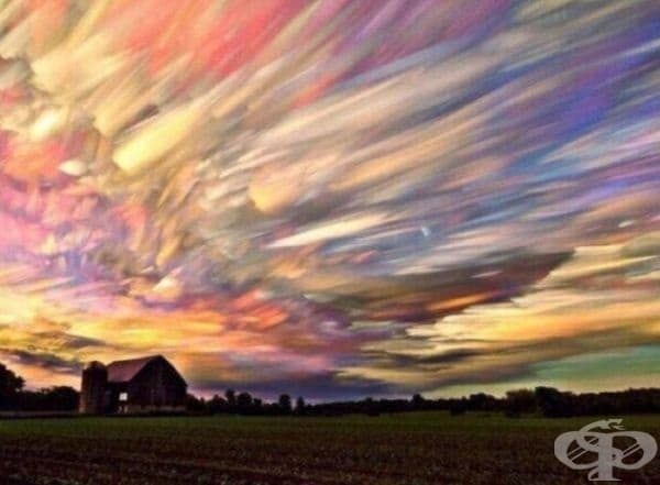 Снимки на 100 залеза, подредени в едно изображение.