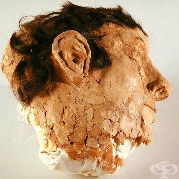 Глава от сапун, памук и коса. Затворниците от Алкатраз са ги поставяли в леглата за заблуда при бягството си през 1962 година.