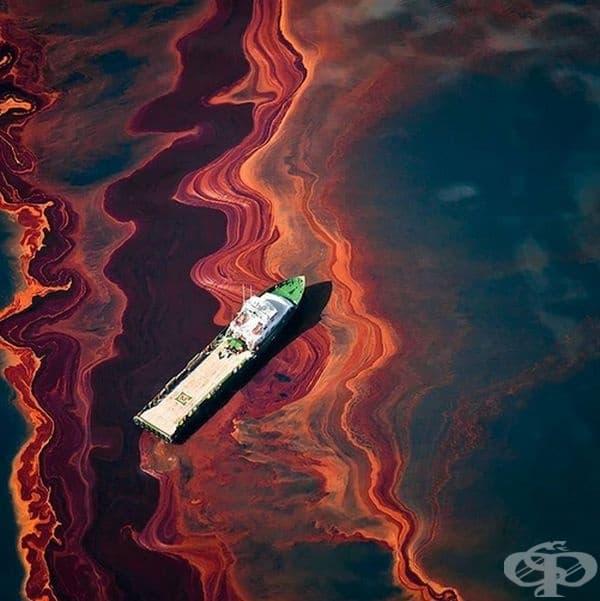 Петролните разливи могат да изглеждат като абстрактни шедьоври, но те са изключително опасни за морския живот.
