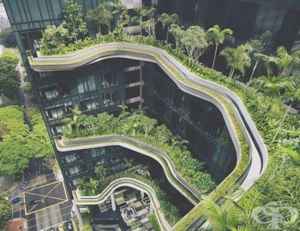 Хотел в Сингапур с изглед към природата.