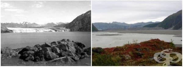 Ледник Каръл, Аляска (август 1906 - септември 2003).