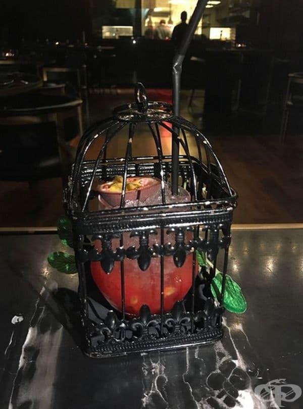 Питие в клетка за птици.