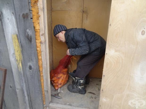 Имаме около 20 кокошки и една патка