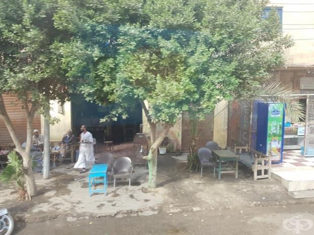 Египет - далеч от туристическите маршрути, в началото на 2019