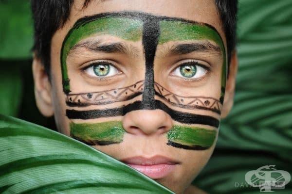 20 великолепни снимки, които се взират директно във вас