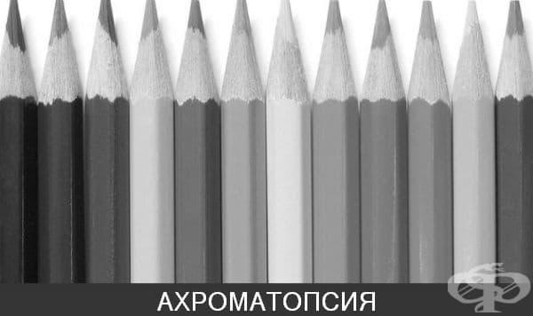 Монохроматизъм или ахроматопсия - пълна цветна слепота. Това е най-рядката форма на зрително нарушение. Хората, засегнати от нея, виждат всичко в черно и бяло.