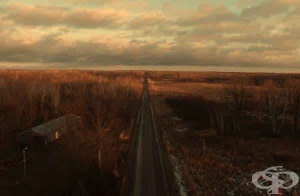 Дълъг път през гората при залез слънце, САЩ.