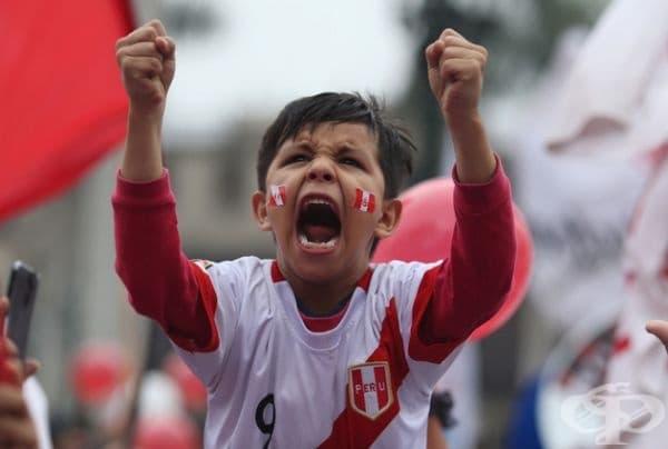 Млад перуански фен на мача Дания - Перу.