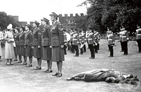 Млада жена изпада в безсъзнание от топлината пред принцеса Елизабет, при отдаване на чест в строя на Кралския военен корпус на жените в Шрюсбъри, Англия, 6 юли 1949 г.