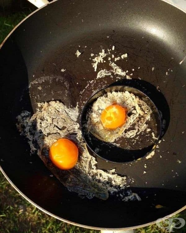 Оставете две яйца на открито за 3 часа в Австралия.