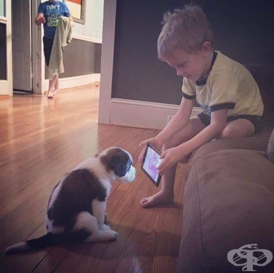 """Родителите обяснили на детето, че в интернет има много видеоклипове за това как да се тренира кученце. """"Ето кученце, гледай!"""""""