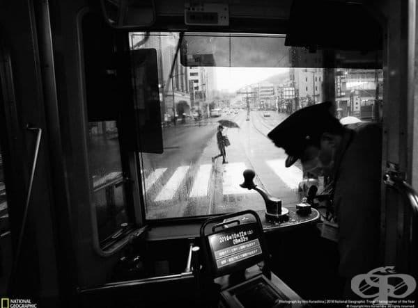 """Още един дъждовен ден в Нагасаки, Япония. Първо място в категория """"Градове""""."""
