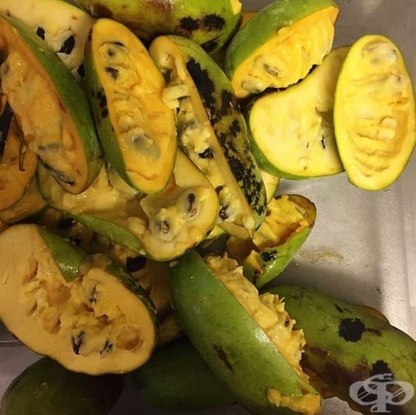 Асимина Трилоба. Плодовете растат в САЩ, но са малко известни, защото е много трудно да се транспортират. Експертите описват вкуса като смес от банани, ананас и манго. Те са богати на витамин В, магнезий и желязо. Подходящи са за смутита и напитки.