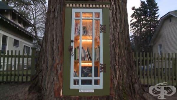 Семейството превръща 110-годишно дърво пред дома си в безплатна библиотека