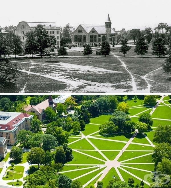 Пътеките към Университета в Охайо са направени от студенти, които са минавали по най-удобното за тях място в миналото. Пътеките днес.