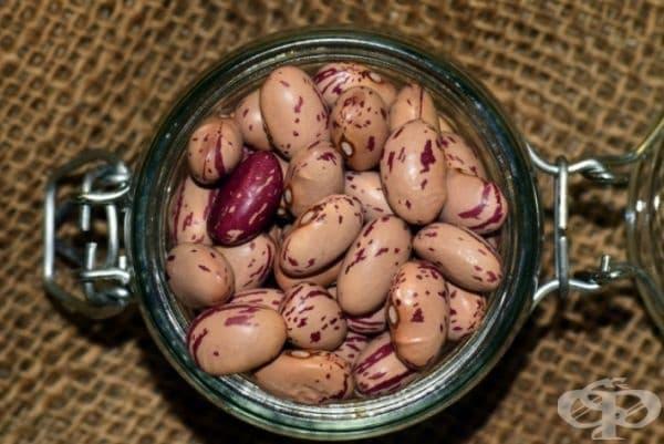 Сушен боб. Учени от Университета на Бригъм Йънг в Юта откриват, че след 30 години външният вид на бобовите зърна се променя, но всички проби остават приемливи за използване при спешни случаи. Това означава, че фасулът би могъл да се съхранява до 30 г.