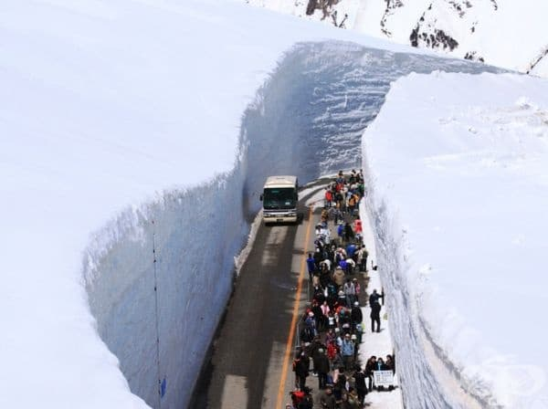 """Снежната стена е с дължина 90 км и е разположена на север от Токио на така наречения """"покрив на Япония"""". Тя е изключително привлекателна за местни и туристи."""