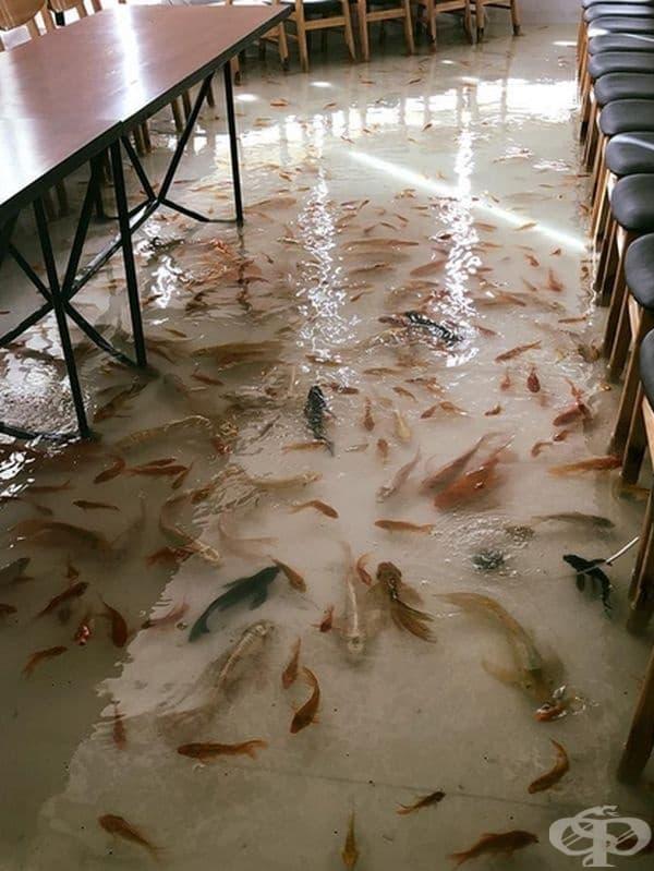 Водата по пода минава през тройна система за филтриране.